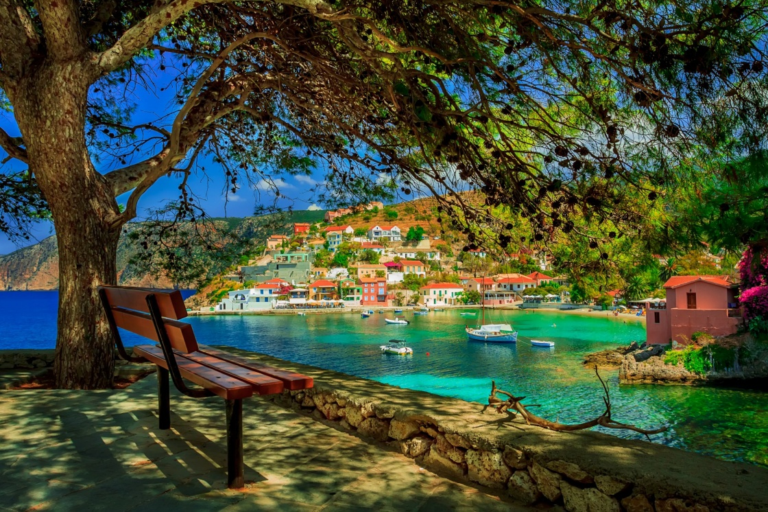 'Bench under a tree on a sunny day at Assos beach, Kefalonia, Greece' - Κεφαλονιά